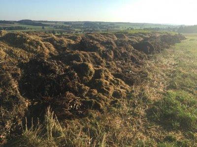 Stroh mit Gras wurde mit Schwadmäher zusammen gelegt und am Feldrand mit Grüngutabfällen gelagert